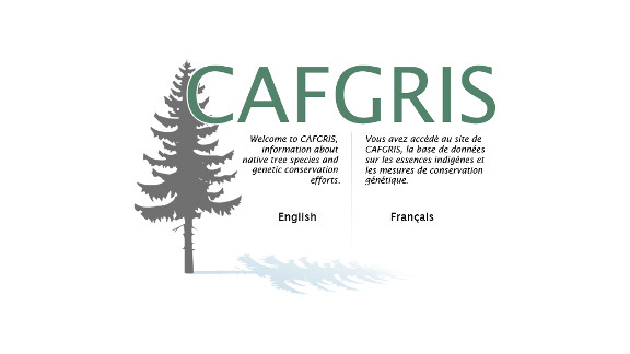 CAFGRIS - Native Tree Species & Genetic Conservation